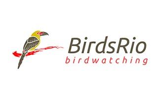 Birds Rio