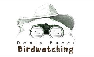 Demis Bucci